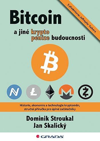 big_bitcoin-a-jine-kryptopenize-budoucn-cVr-370653.jpg