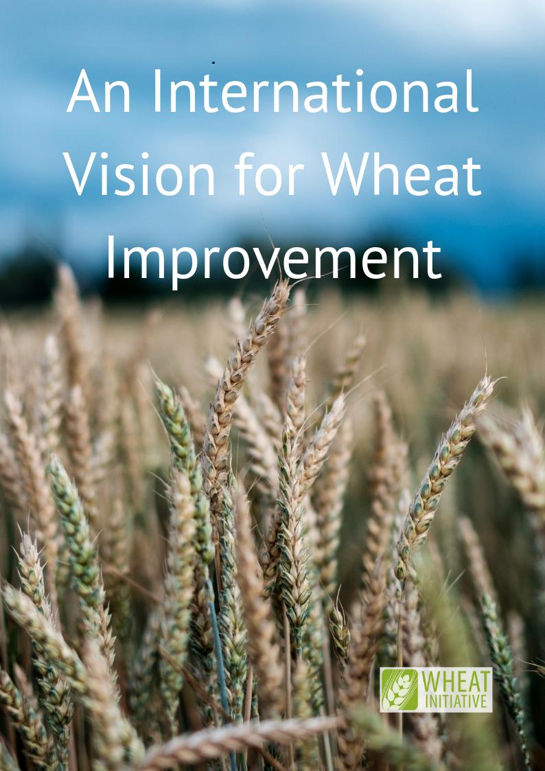 WheatInitiativeVisionPaper.png