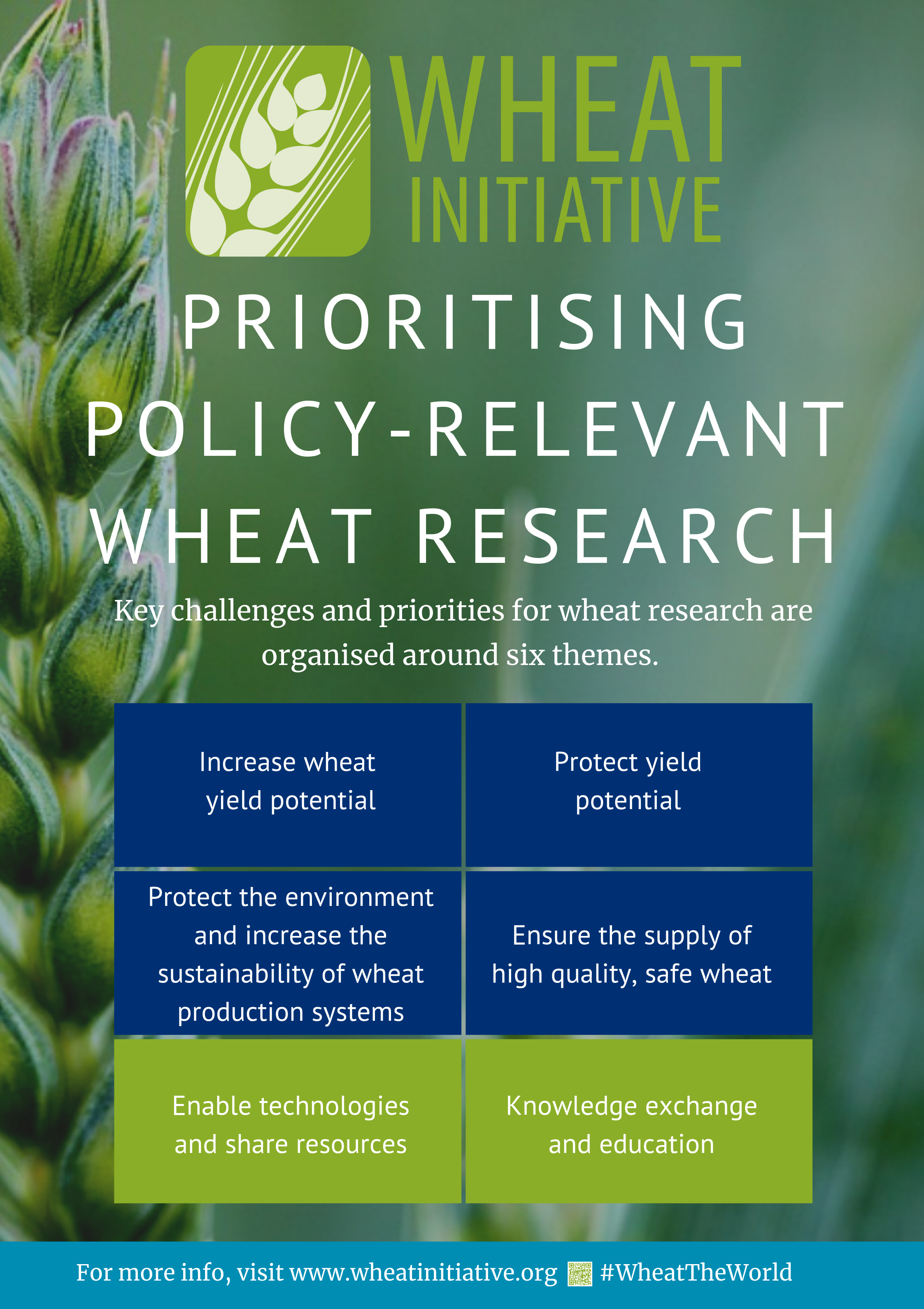 Wheat_Initiative_Poster2.png