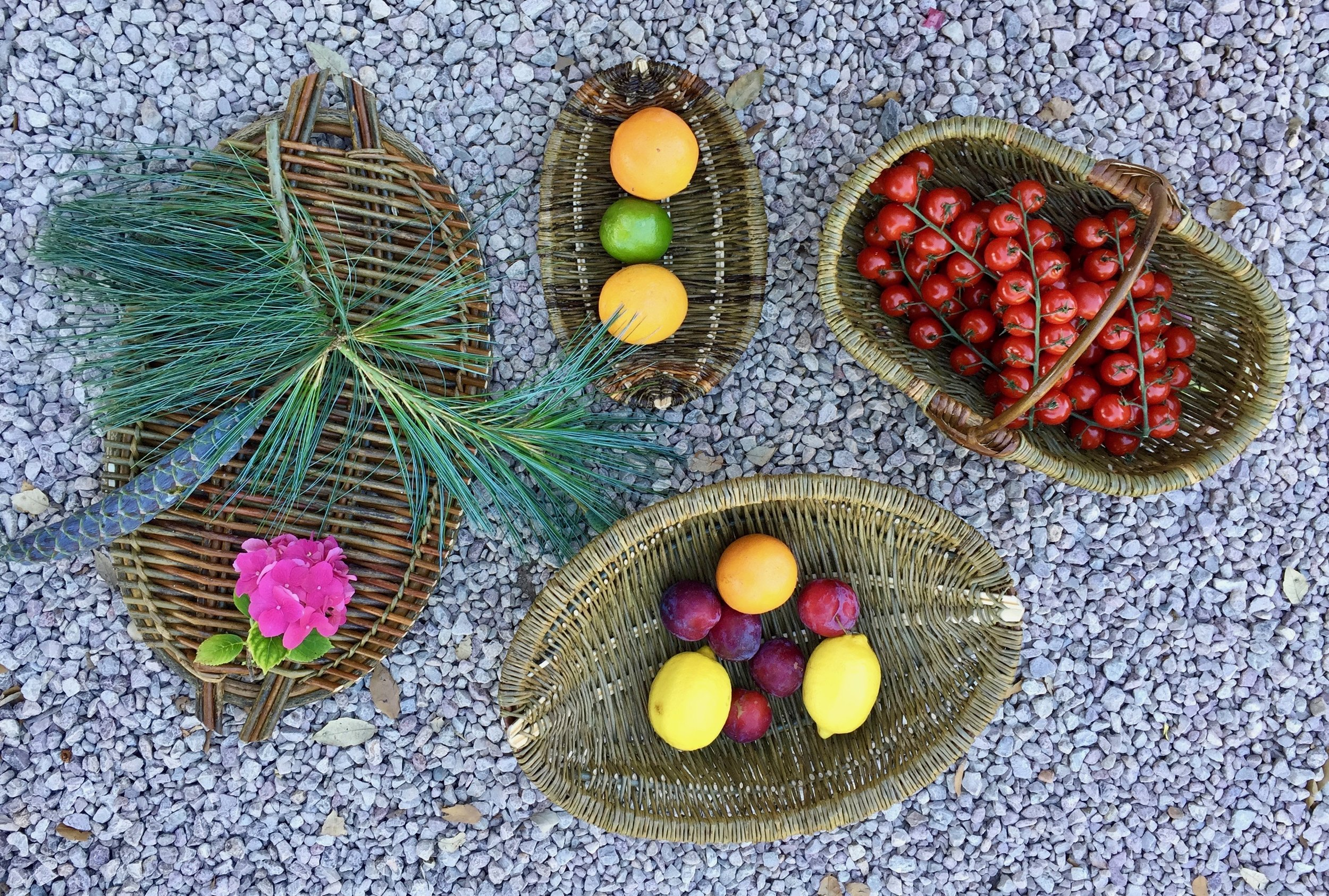 Some of the completed basketry from the workshop with Annemarie O'Sullivan .jpg