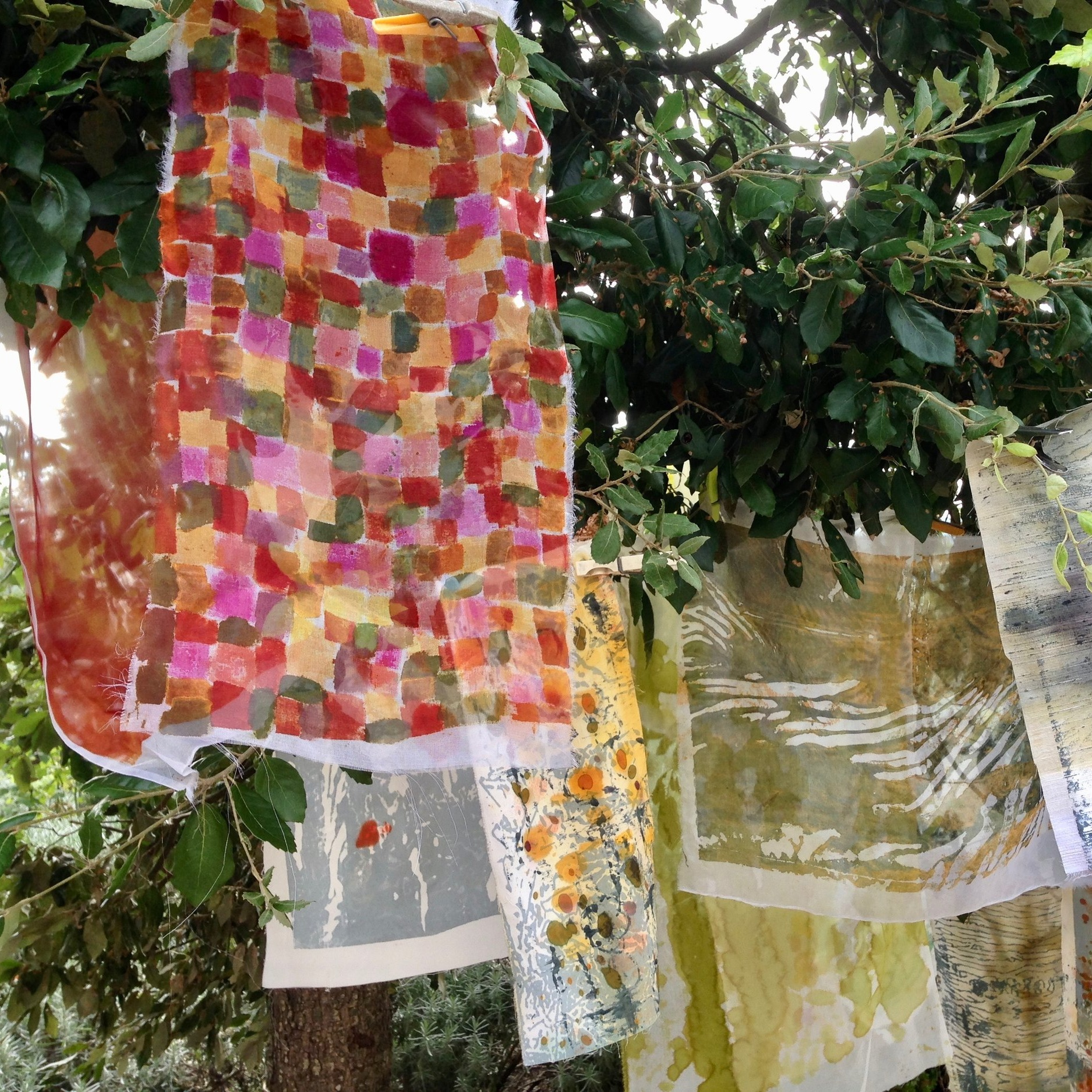Colour into Cloth - with Carole WallerSeptember 2017