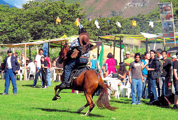 En fiestas patrias, Oxapampa