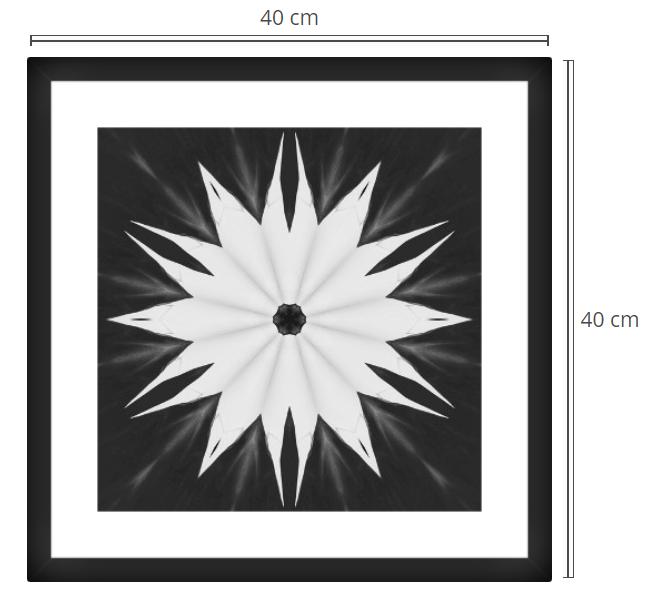 Flore - Product: Framed PhotoPhoto Format: 40x40 cmDecor Frame: Black Matte