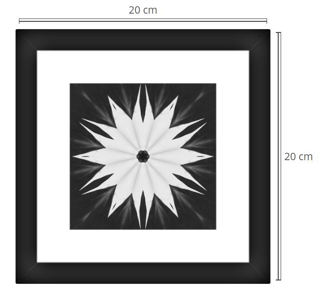 Flore 2 - Product: Framed PhotoPhoto Format: 20x20 cmDecor Frame: Black Matte