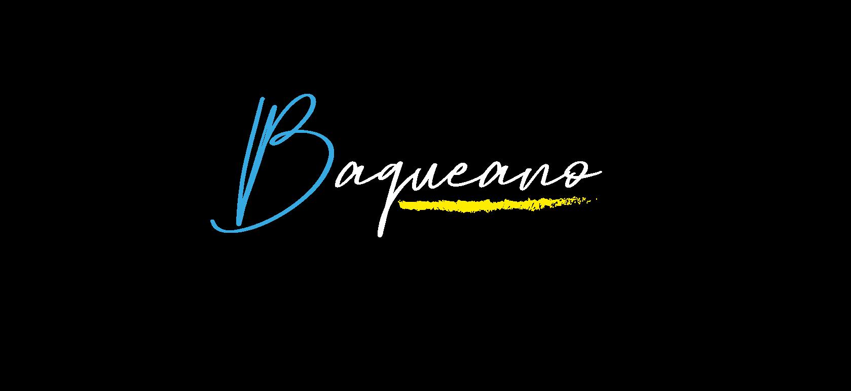 logo pa site.png