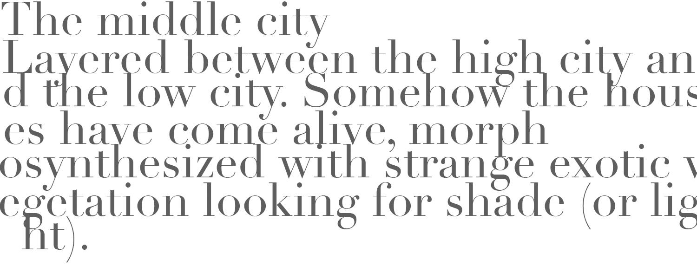 middle city.jpg