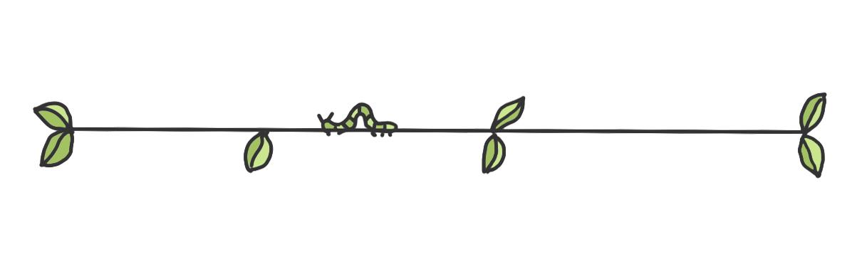 divider-leaves-caterpillar.jpg