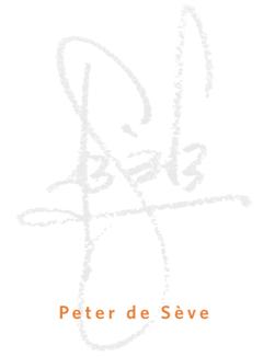 PdS-logo_med2-ORG.png