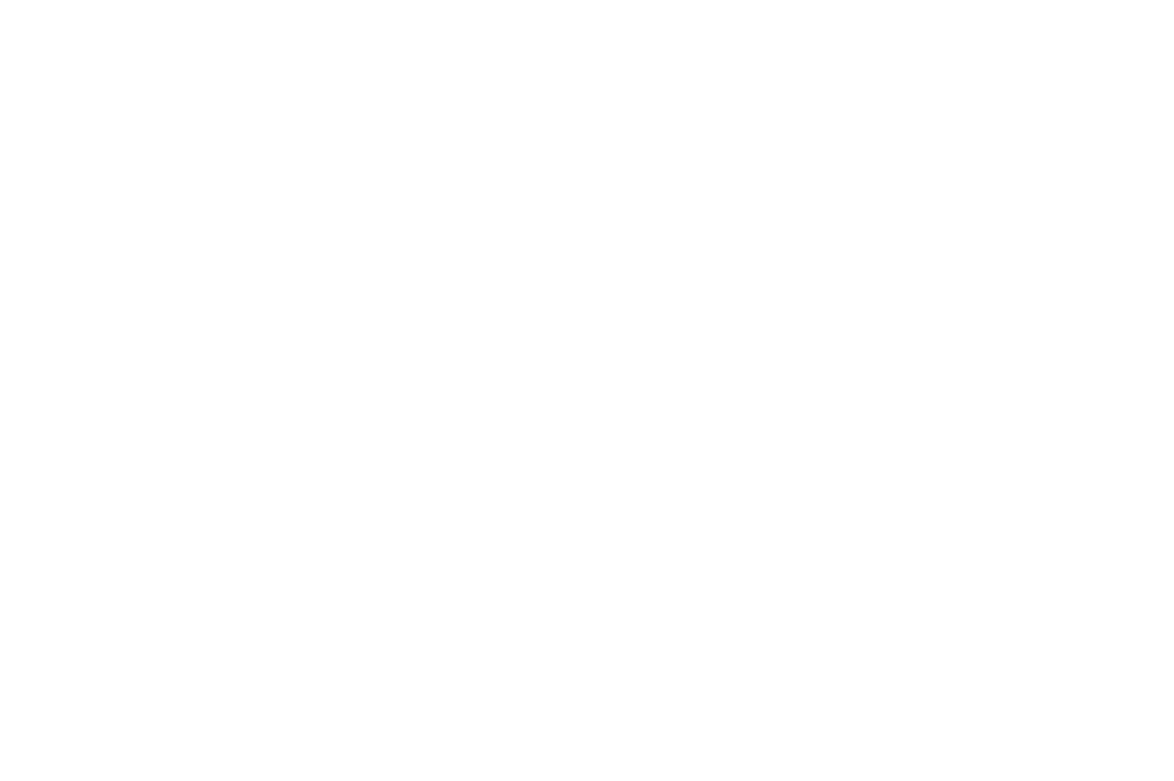 auberger_logo.png