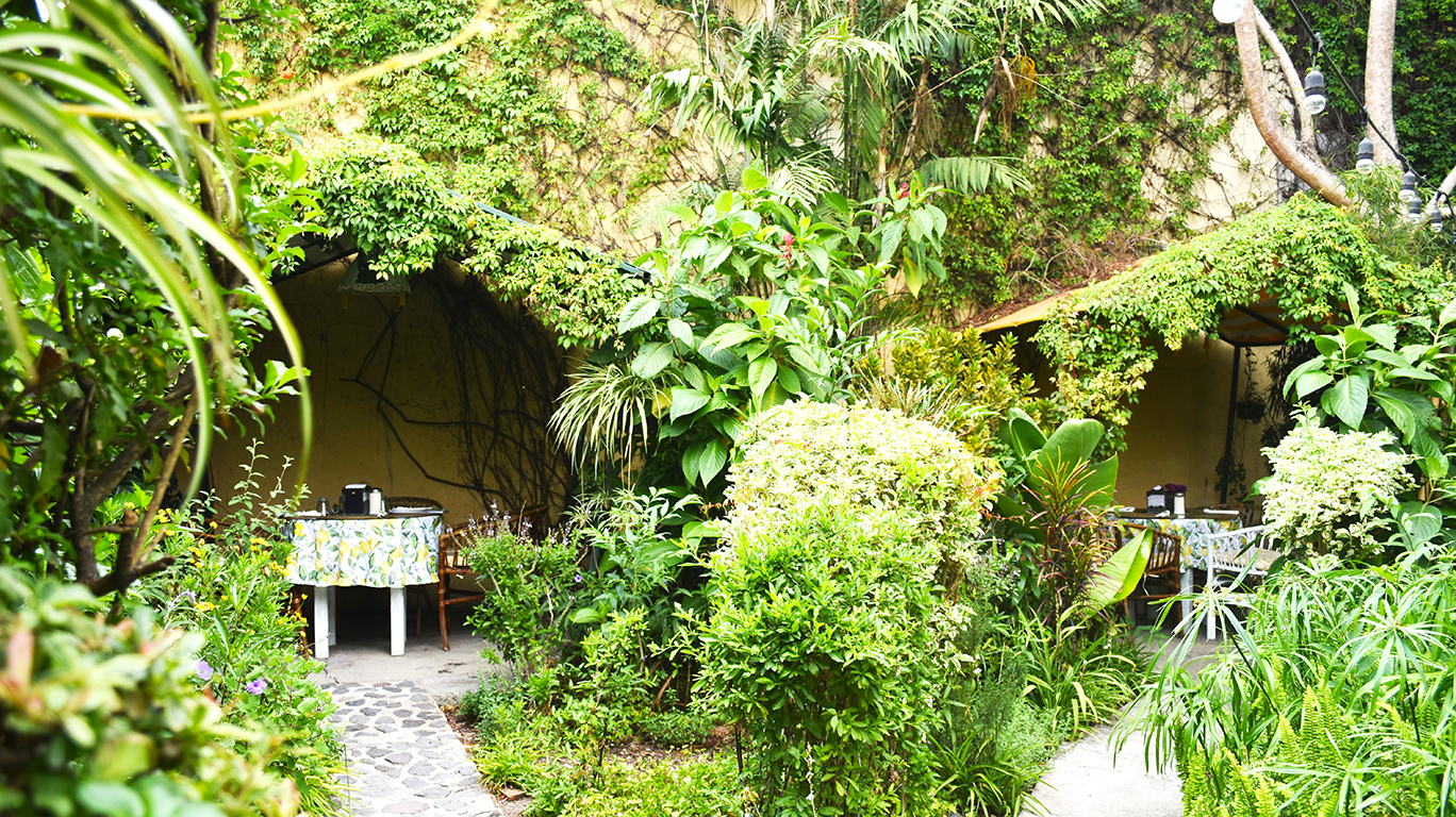 saberico-restaurant-garden-organic-food-where-to-eat-organic-food-vegan-food-vegetarian-food-antigua-guatemala.jpg