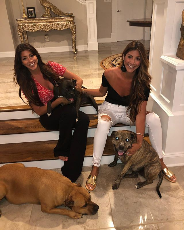 National Dog Mom's Day recognizes the bond women share with their fur kids. When they humor us, charm us or even when they are naughty, they are like any other child to us.  With that said , Happy Dog Mom's Day to all of our friends with pups🐶 And a very Happy Mother's Day tomorrow to everyone with human kids 🧒. . . . . . . #cuceshoes #fabgating #adoptdontshop #petrescue #nationaldogmomday #mothersday #pitbullsofinstagram #dontbullymybreed #dogsofinstagram #savealife #savealifeadopt #dog #dogstagram