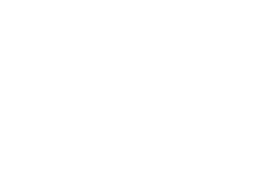 MB VISION TYPE.png