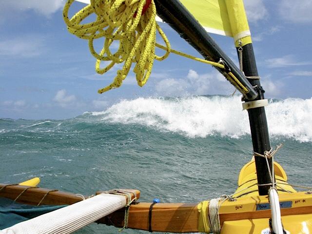 Open Ocean Action