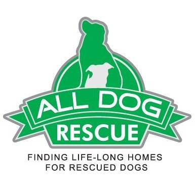 All Dog Rescue