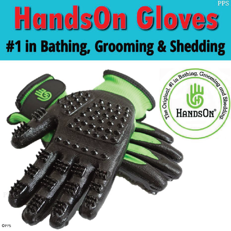 HandsOn Gloves_Pet Product-01.png