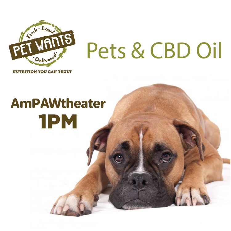 Pet Wants_Pets &CBD Oil.png