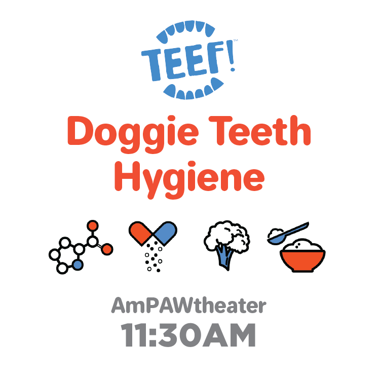 Teef_Doggie Teeth Hygiene.png