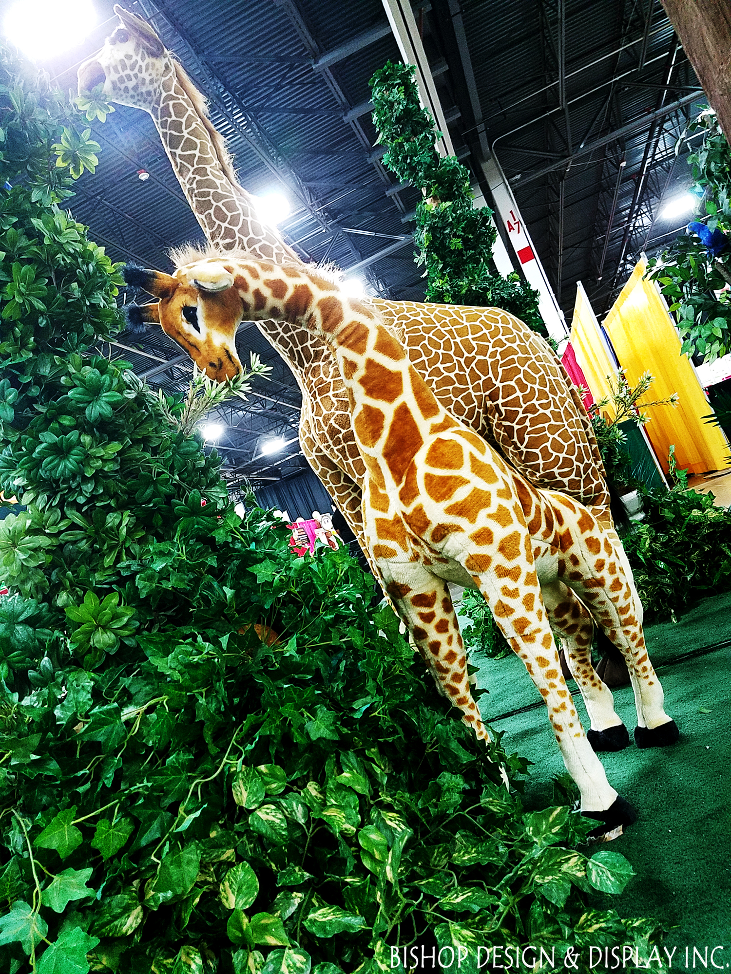 Plush Giraffes