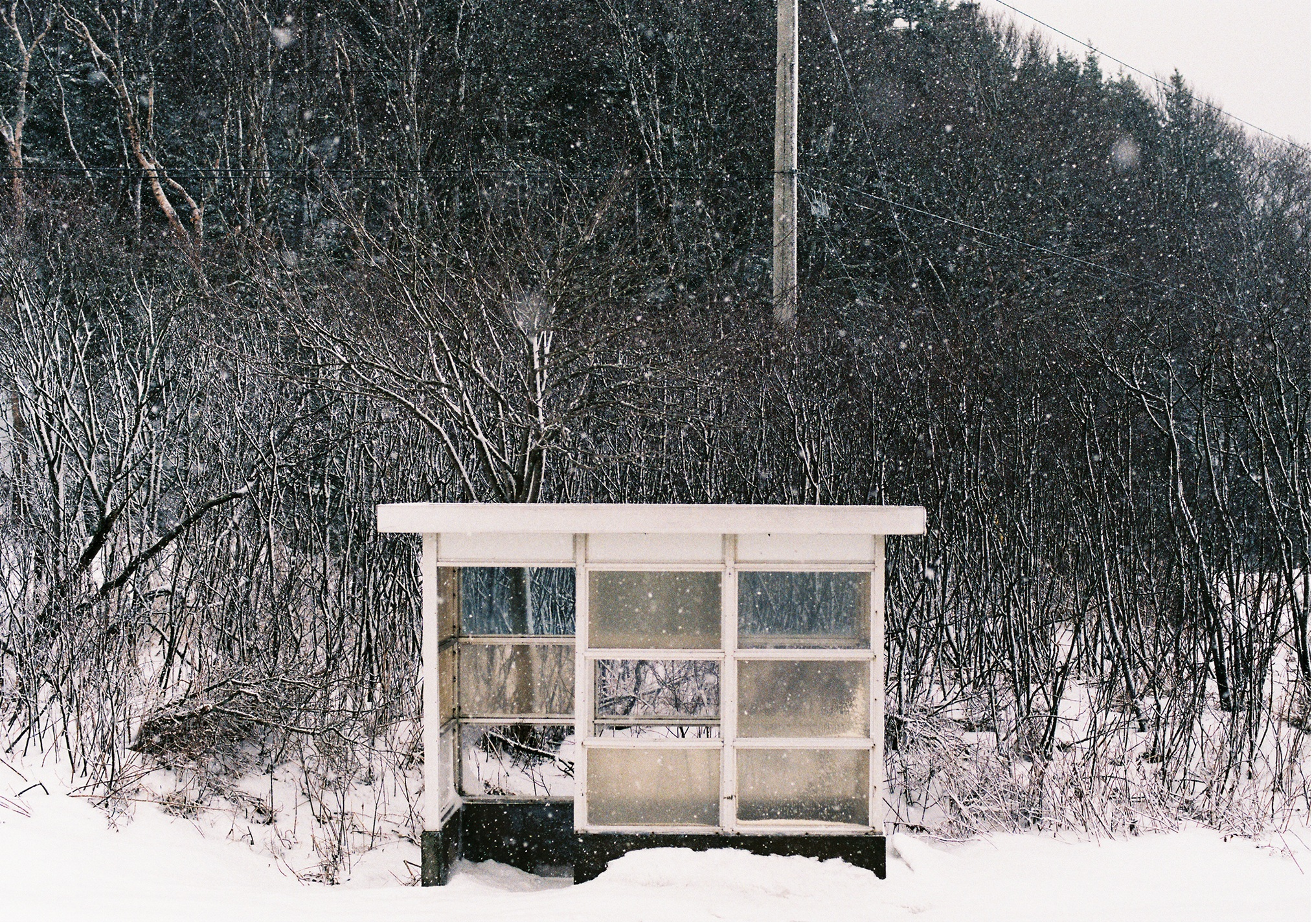 """""""West Side Bus Shelter"""", 35mm Photograph, 2016"""