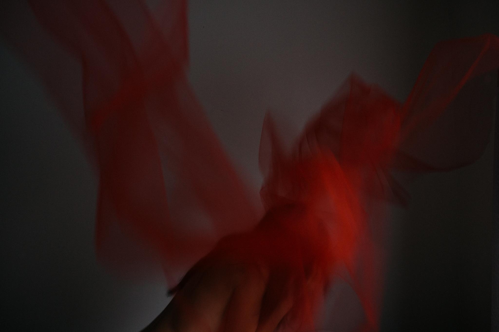 RED-16.jpg