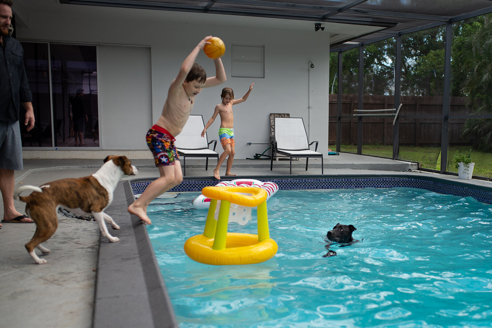 Boys and Dogs in Pool - South Florida Family Photography