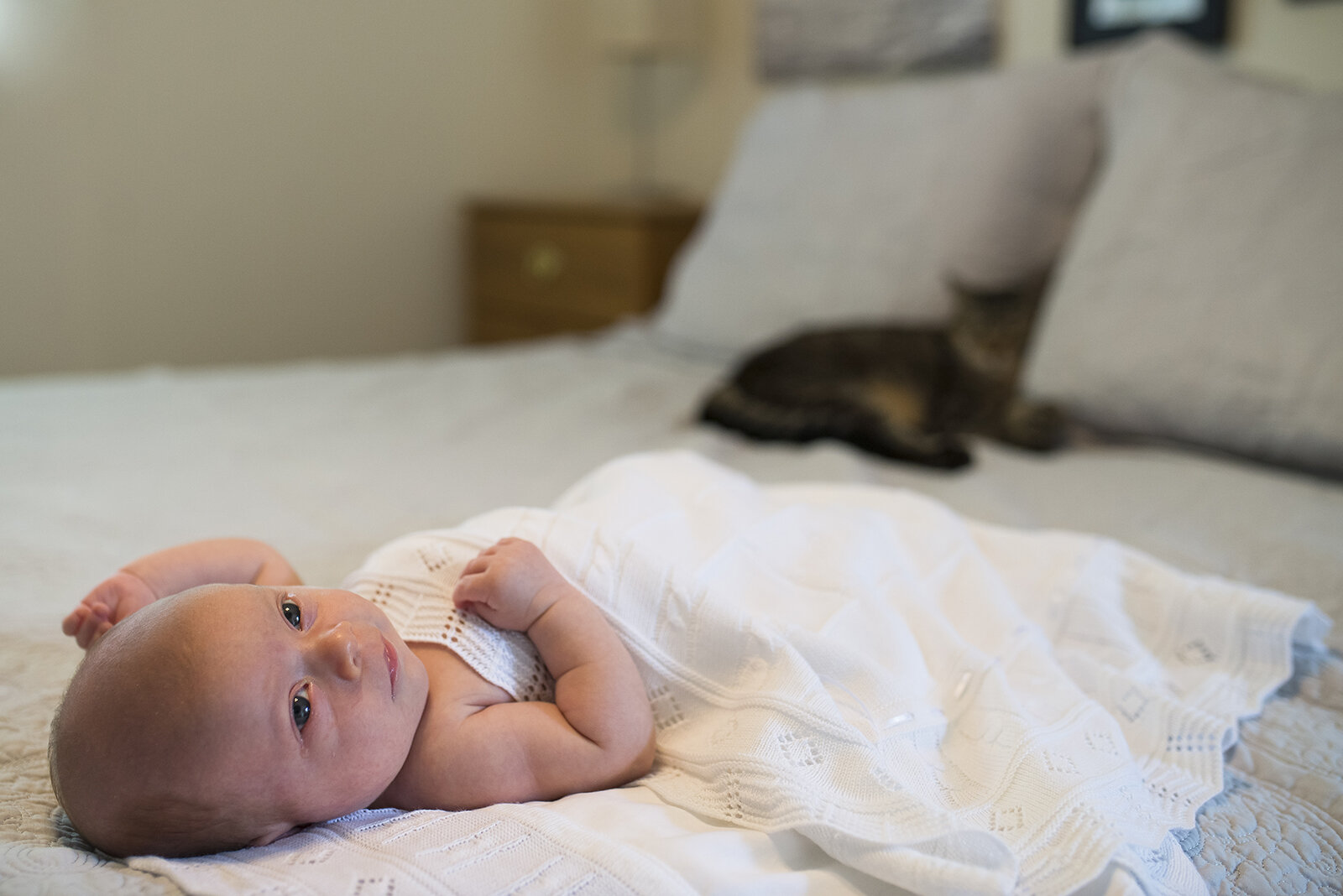 cooper-city-newborn-photographer_08.jpg