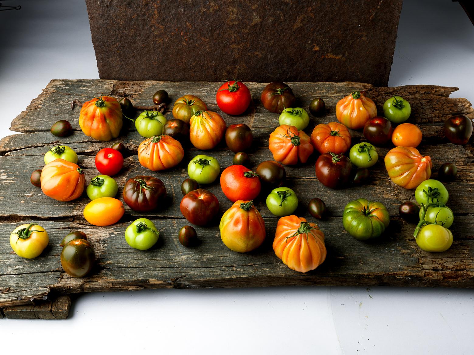 019a tomato varieties copy.jpg