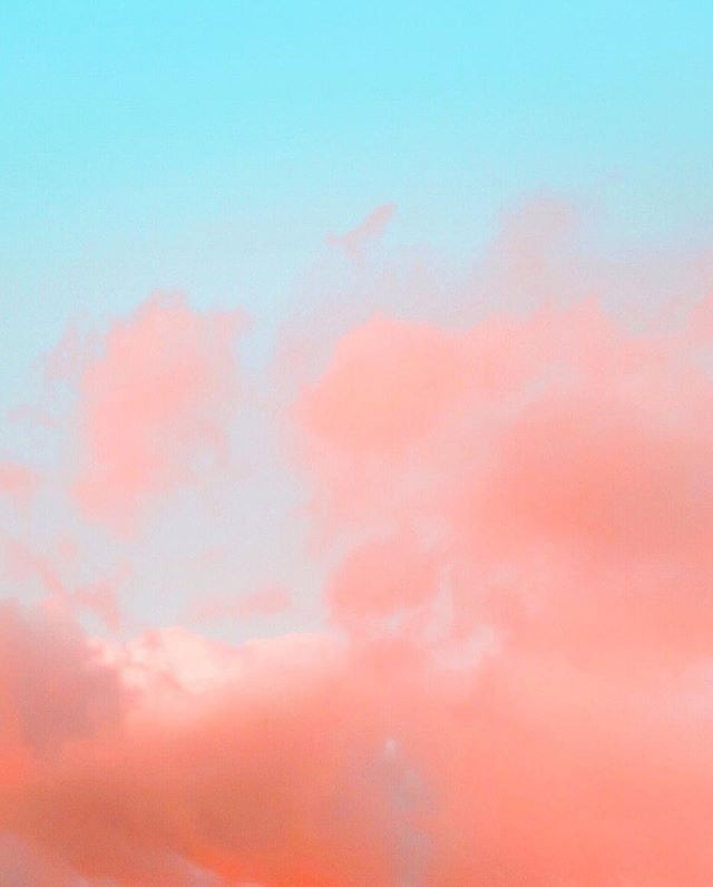feet on the ground, head in the sky..... 📸@stellalunastudio⠀ .⠀ .⠀ .⠀ .⠀ .⠀ .⠀ #createtocultivate #weeklyresouces #creativepreneurs #createandcultivate #millennialblogger #socialmediaexpert #brandingexpert #creativebiz #createyourlife #inspireconnectgrow #makewavesmonday #alifeofintention #contentcreator ⁣#sisterhoodovercompetition #creativeentrepreneurs #girlbosslife #fempreneur #empowerher #thebrandedlife #womenceo #5280life #5280magazine ⁣⠀