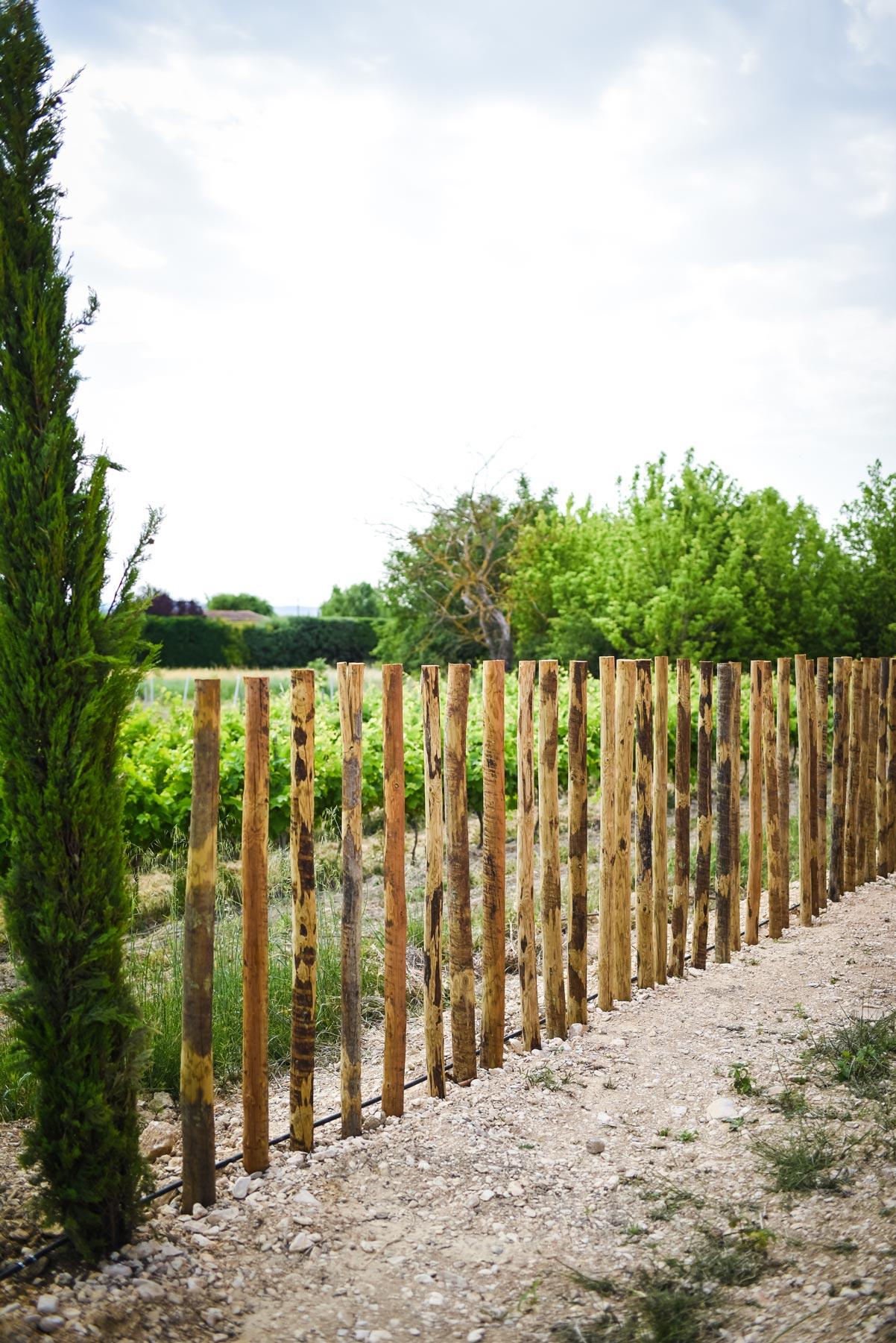 Vindemio-Domaine-Allee-Caveau.jpg