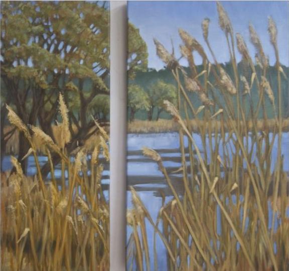 Reeds Below Monieux
