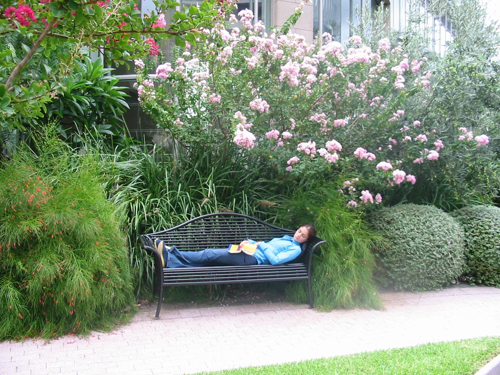 Girl asleep on bench.JPG