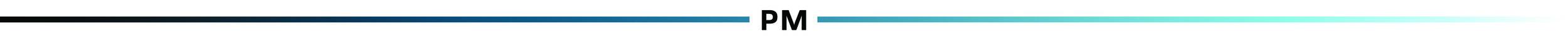 PM line.jpg