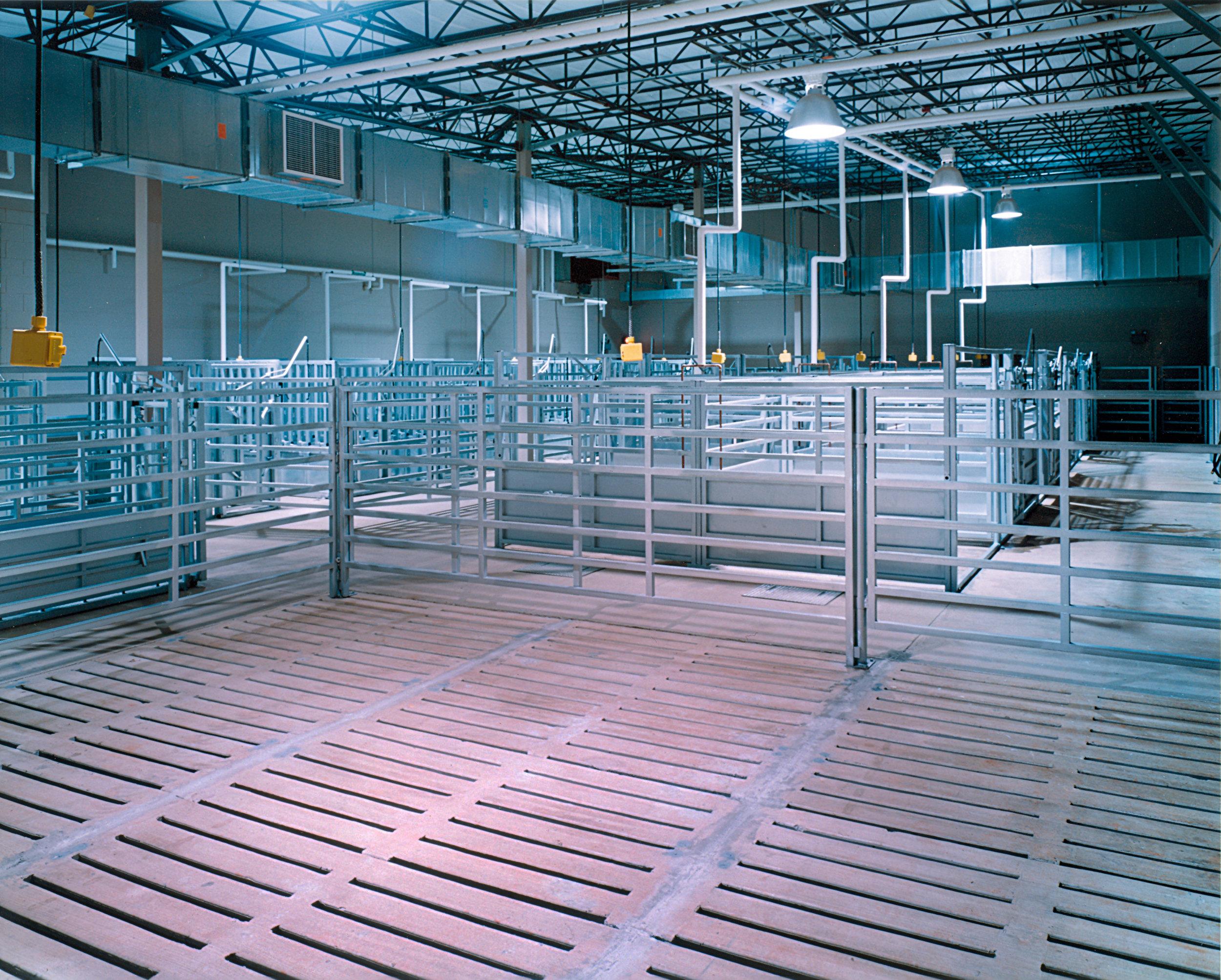 Animal Science - Animal Holding Area - ed.jpg