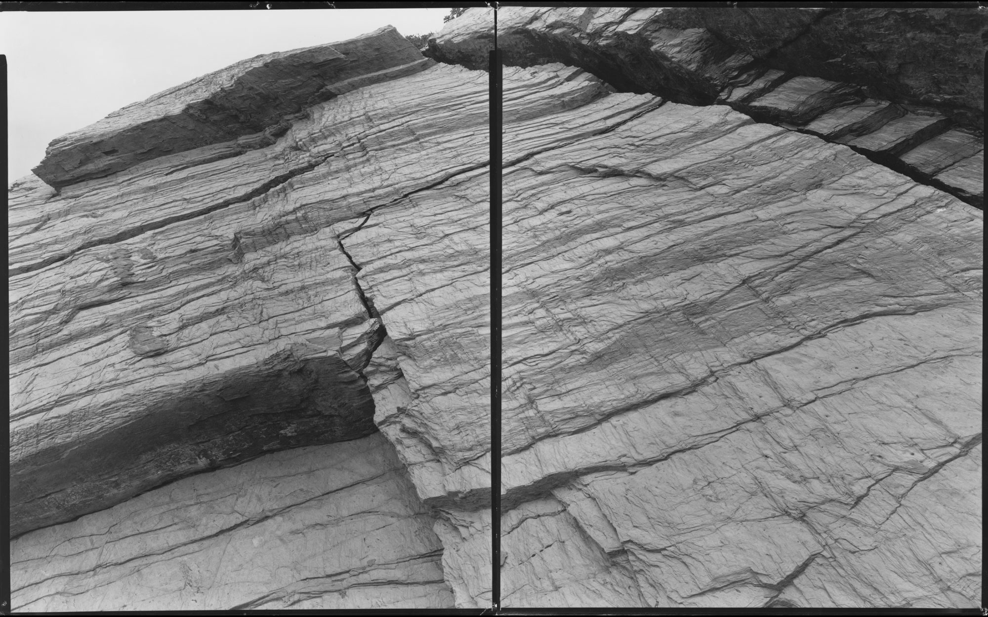 Untitled Diptych ( Beavertail 7-24-00-9 ), 2000