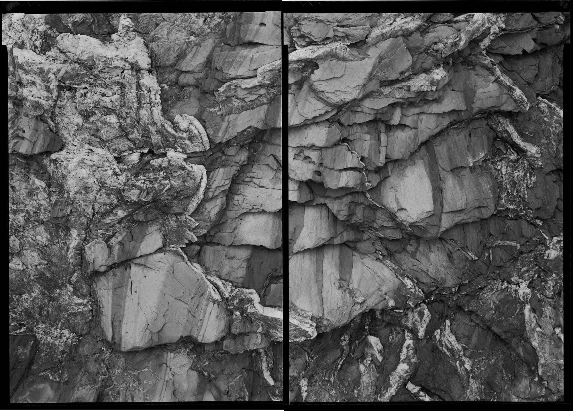 Untitled Diptych ( Beavertail 7-24-01-1 ), 2001