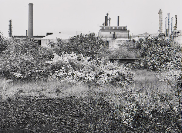 Pitt-Consol Chemicals, Newark #1, 1979
