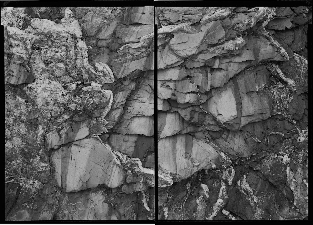 3. Untitled diptych (Beavertail 7-24-01-1), 2001
