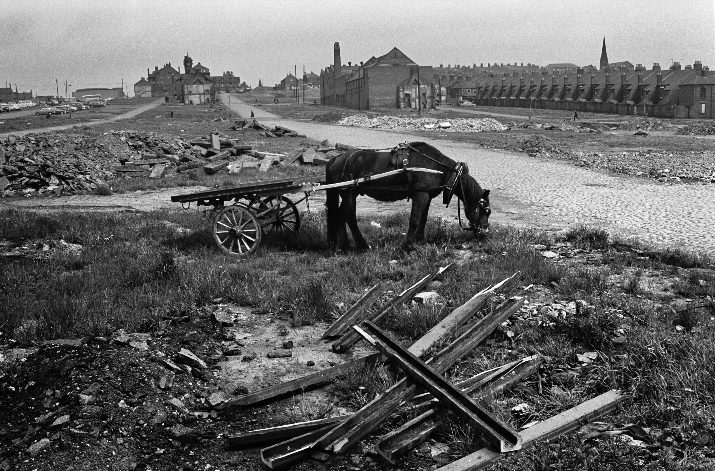 Ragman's Horse and Cart by Union Road, 1970
