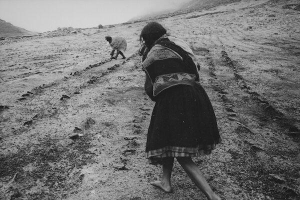 Q'eros / Kiku, planting potatoes