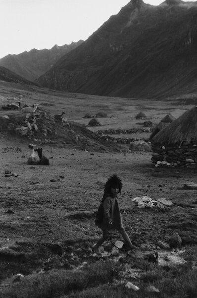 11 Kiku, Q'eros, Peru.jpg