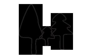 treeline-sq.png