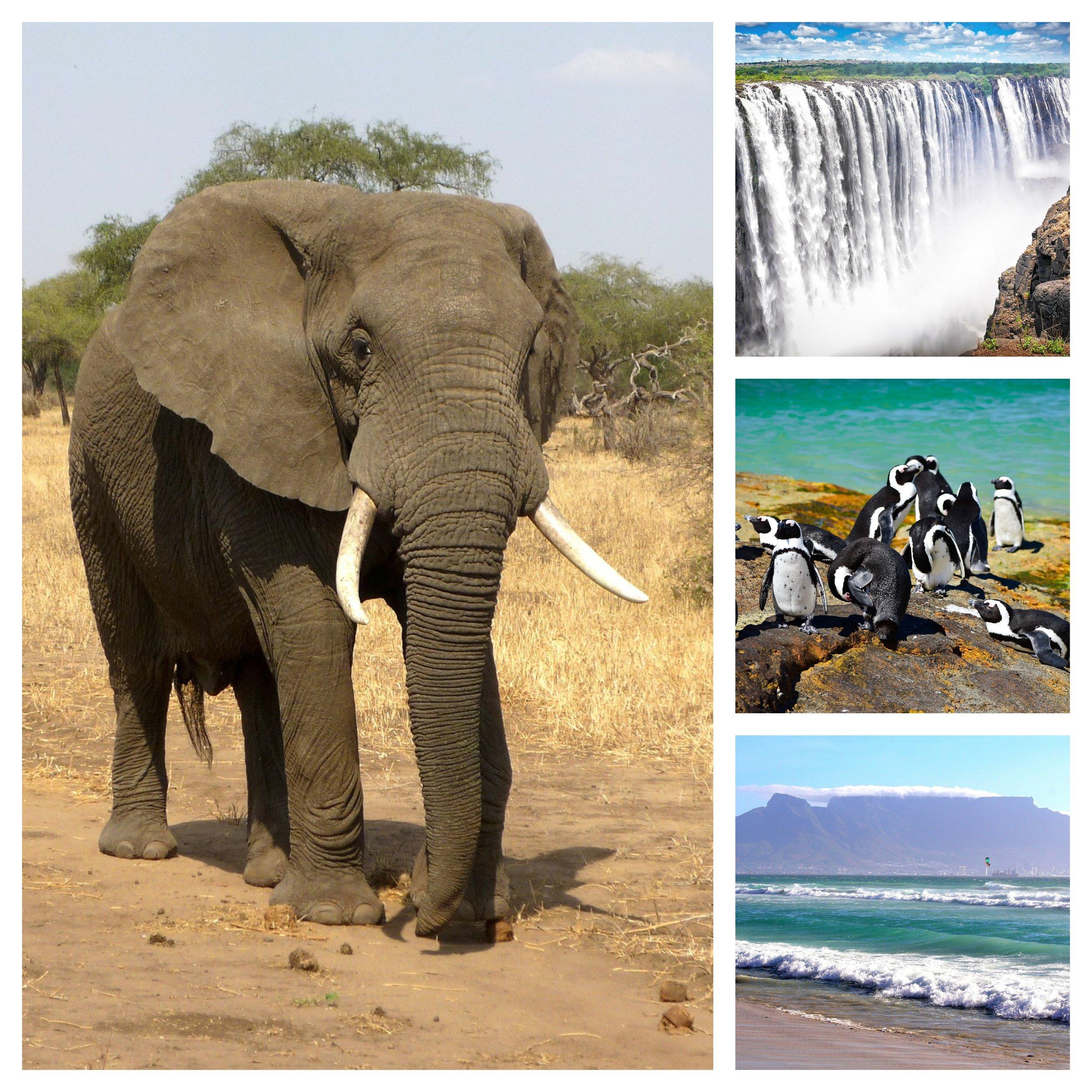 Africa trip (1).jpg