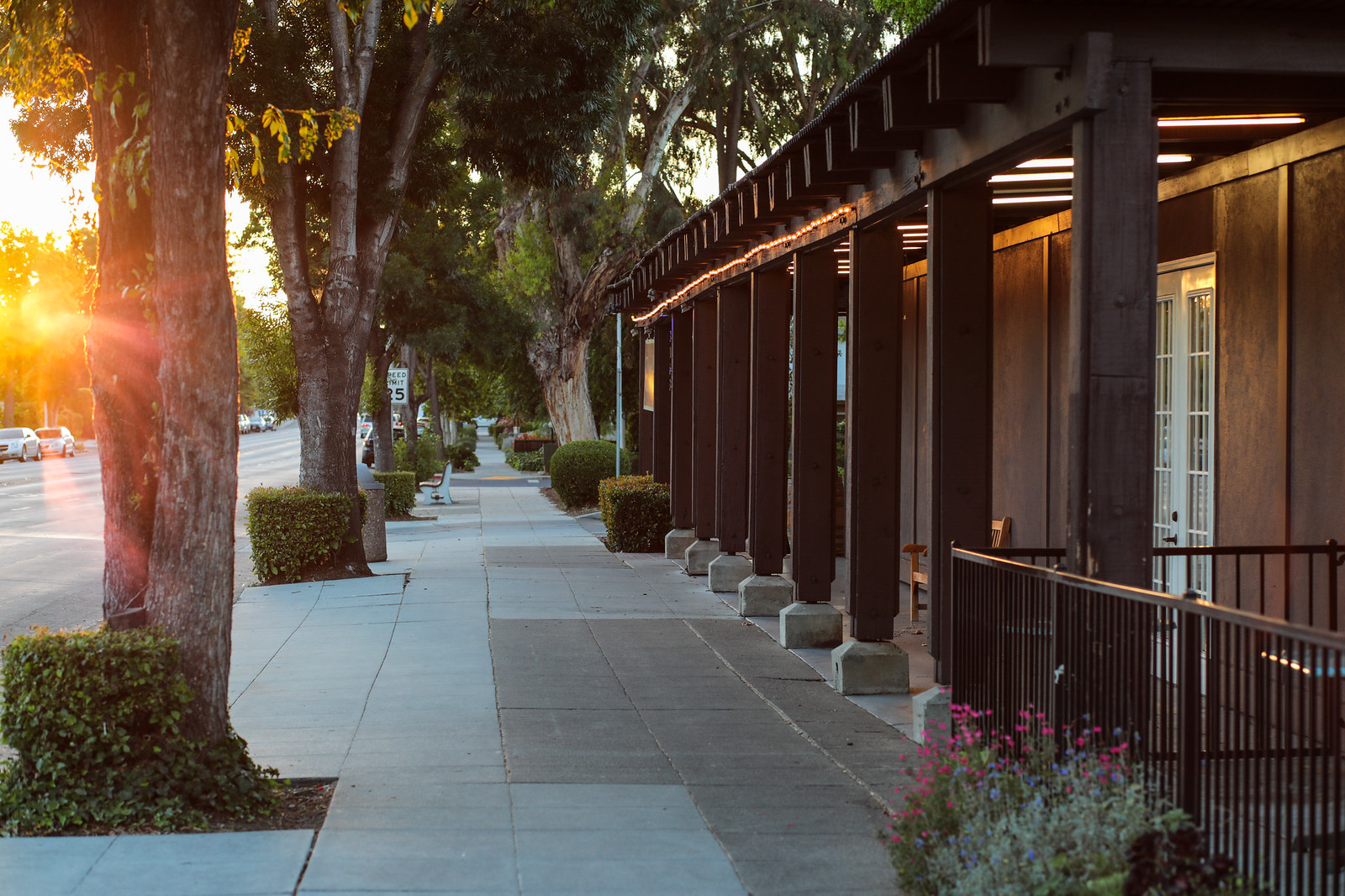 Midtown Palo Alto Blu Skye Media-1137-X3.jpg