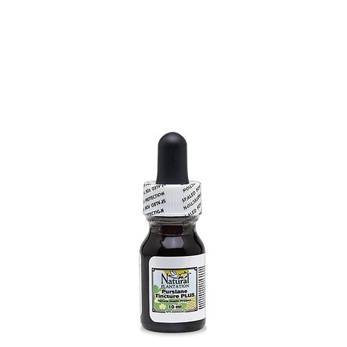 Purslane Tincture (10ml)