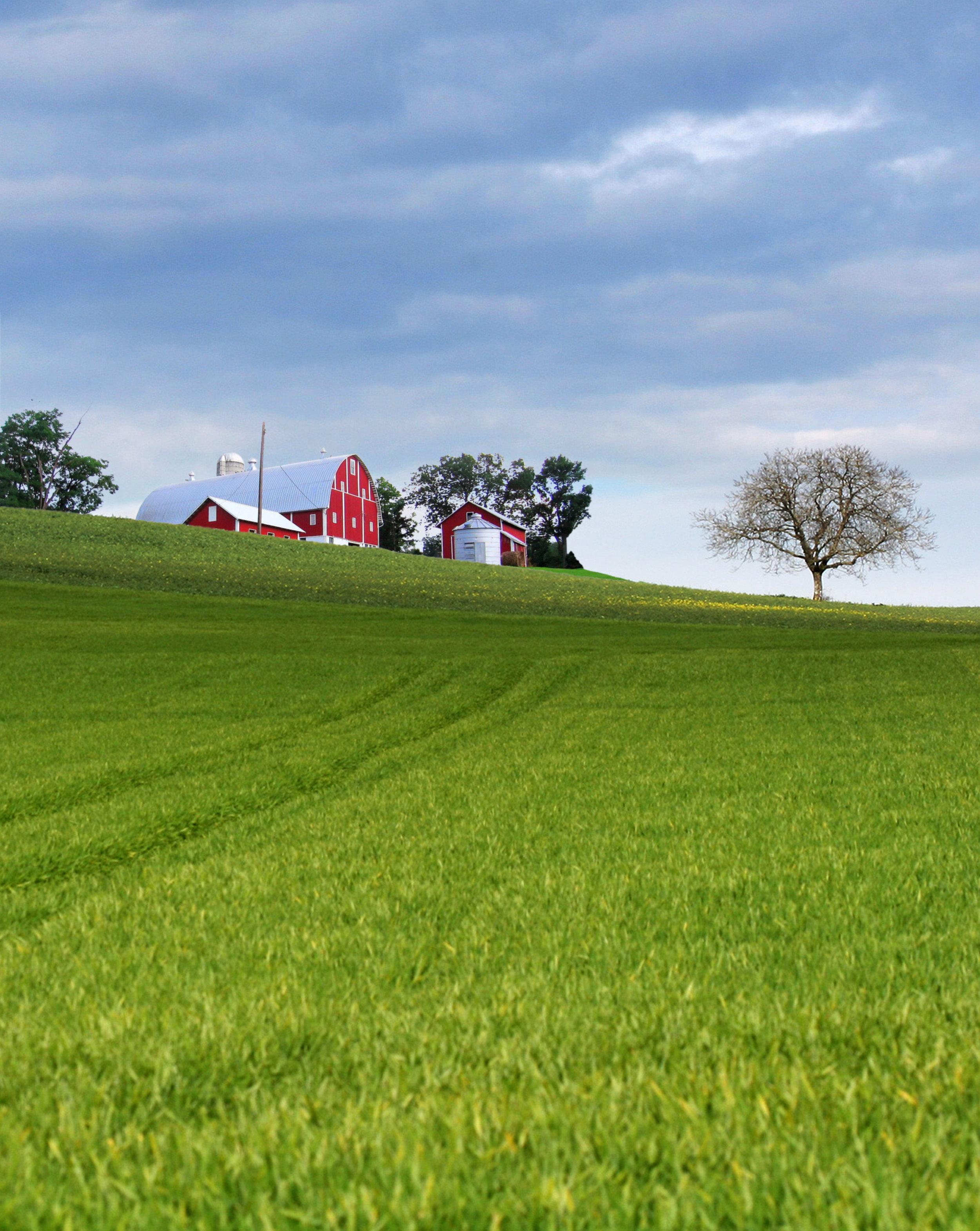 Red Barn & Hills.jpg
