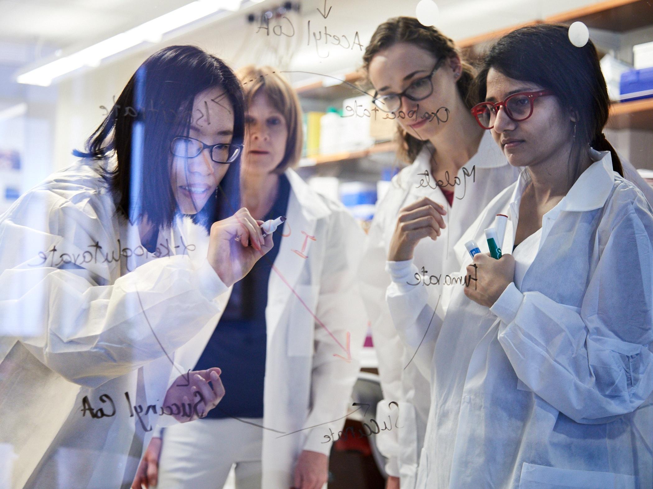 women_in_science.jpg