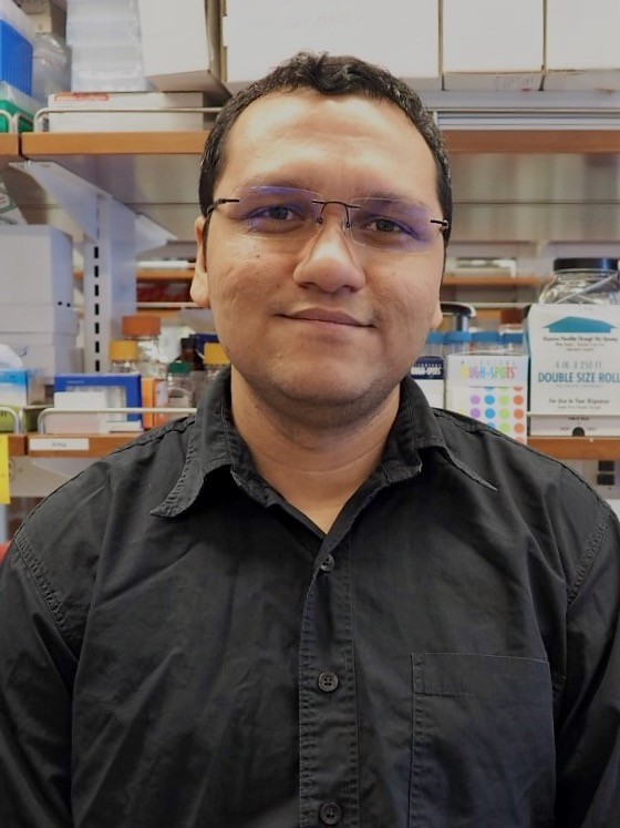Arka Banerjee - Arka is originally from Kolkata, India. After completing his PhD from the Indian Institute of Science (IISc), Bangalore, India, he joined the lab as a Postdoctoral Associate in 2018. His research interests focus on developing directed regulatory switches in mycobacteria and use them to better understand the cellular physiology. In his free time, Arka enjoys cooking and reading about popular science and current affairs.