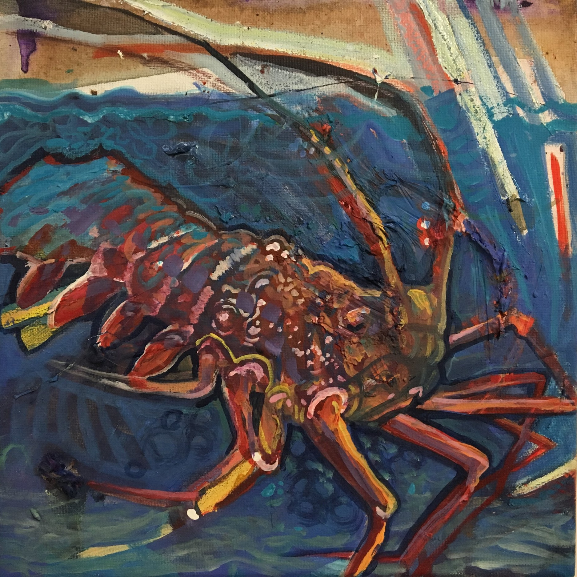 Spiny+Lobster.jpg