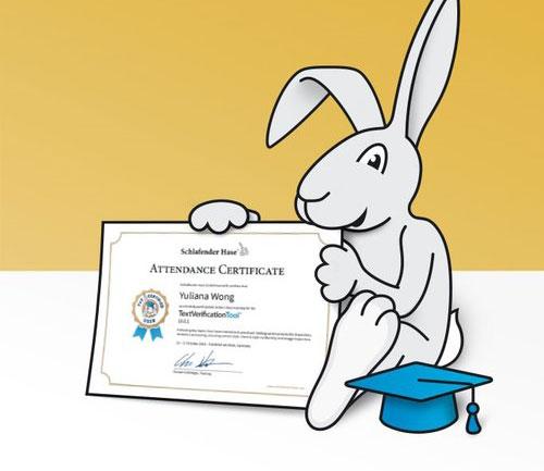 TVT-Training-Rabbit.jpg