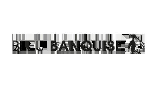 Logo-BleuBanquisepng